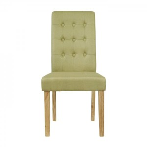 Roma Dining Chairs in Green {Box of 2}