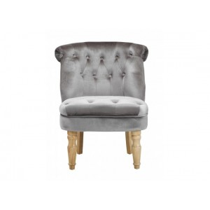 Charlotte Chair in Silver